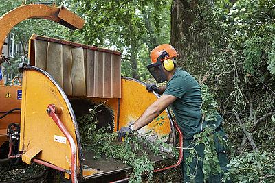 Bau, Handwerk, Grünpflege
